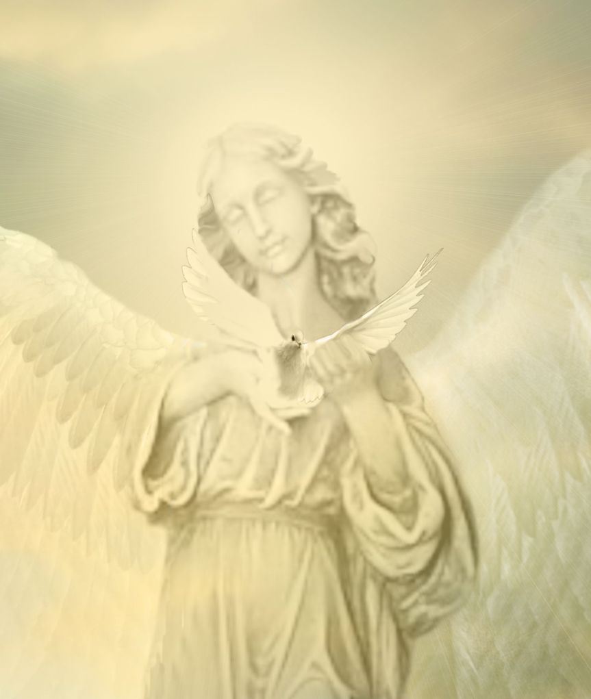 The Angel and the Dove