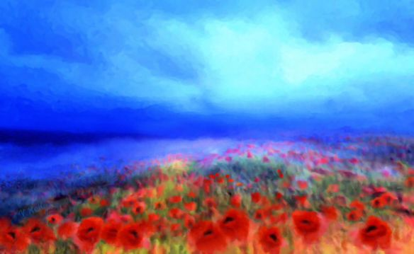 Poppies in the mist