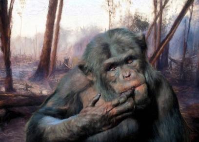 The last Chimpanzee