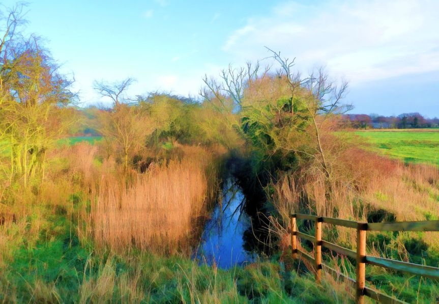 The Norfolk Dyke